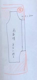 ヒトカゲコスプレのイメージ図